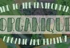 Organique [2 Fonts] | The Fonts Master