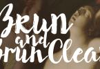 Brun [2 Fonts] | The Fonts Master