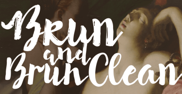Brun [2 Fonts] | The Fonts Master
