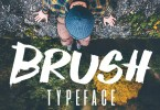 Brush Typeface [1 Font] | The Fonts Master