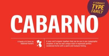 Cabarno [8 Fonts] | The Fonts Master