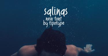 Salinas [1 Font] | The Fonts Master