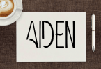 Aiden [4 Fonts] | The Fonts Master