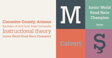 Calvert [3 Fonts] | The Fonts Master
