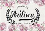 Ardina Script [1 Font] | The Fonts Master