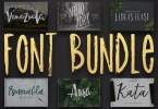 12 Fonts Bundle [12 Fonts] | The Fonts Master