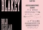 Blakey Slab [2 Fonts] | The Fonts Master