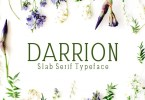 Darrion [5 Fonts] | The Fonts Master