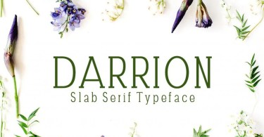 Darrion [5 Fonts] | The Fonts Master