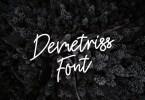 Demetriss [1 Font] | The Fonts Master
