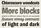 Lexon [8 Fonts] | The Fonts Master