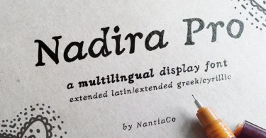 Nadira Pro [2 Fonts] | The Fonts Master