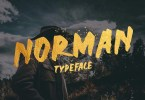 Norman [1 Font] | The Fonts Master