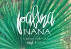 Palma Nana [2 Fonts] | The Fonts Master