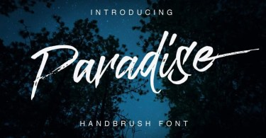 Paradise [1 Font] | The Fonts Master