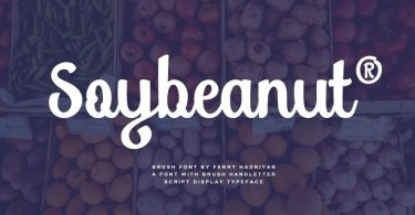 Soybeanut [2 Font] | The Fonts Master