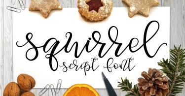 Squirrel Script [1 Font] | The Fonts Master