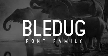 Bledug [8 Fonts] | The Fonts Master