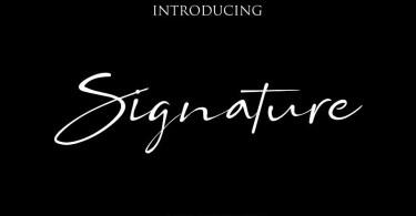 Bs Signature [1 Font] | The Fonts Master