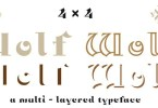 Nt Wolf [4 Fonts] | The Fonts Master