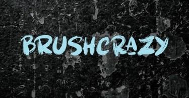 Brushcrazy [2 Fonts]   The Fonts Master