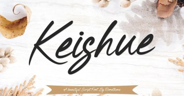 Keishue [1 Font] | The Fonts Master