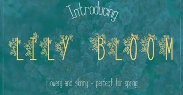 Lily Bloom [4 Fonts] | The Fonts Master