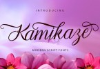 Kamikaze [1 Font] | The Fonts Master