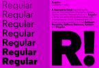 A2 Regular Super Family [14 Fonts] | The Fonts Master