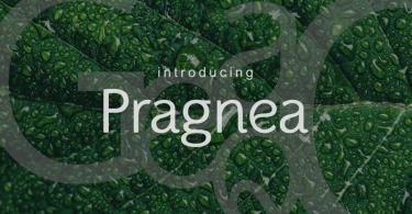 Pragnea [6 Fonts] | The Fonts Master