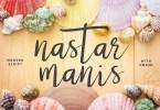 Nastar Script + Swash [3 Fonts] | The Fonts Master