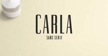 Creativetacos Carla [4 Fonts] | The Fonts Master