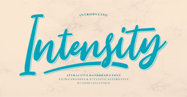 Intensity [1 Font] | The Fonts Master