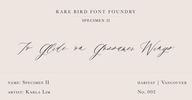 Rare Bird Specimen Ii Super Family [1 Font] | The Fonts Master