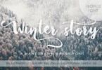 Winter Story [2 Fonts] | The Fonts Master