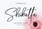 Shikatta [1 Font] | The Fonts Master