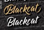 Blackcat Script [2 Fonts] | The Fonts Master