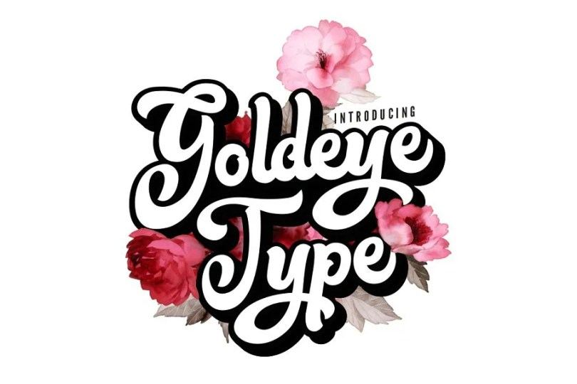 Goldeye Type [1 Font]   The Fonts Master
