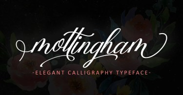 Mottingham Elegant Calligraphy [1 Font] | The Fonts Master
