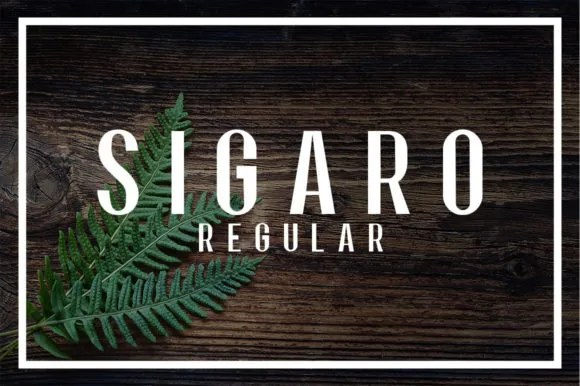 Sigaro [1 Font]   The Fonts Master