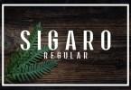 Sigaro [1 Font] | The Fonts Master