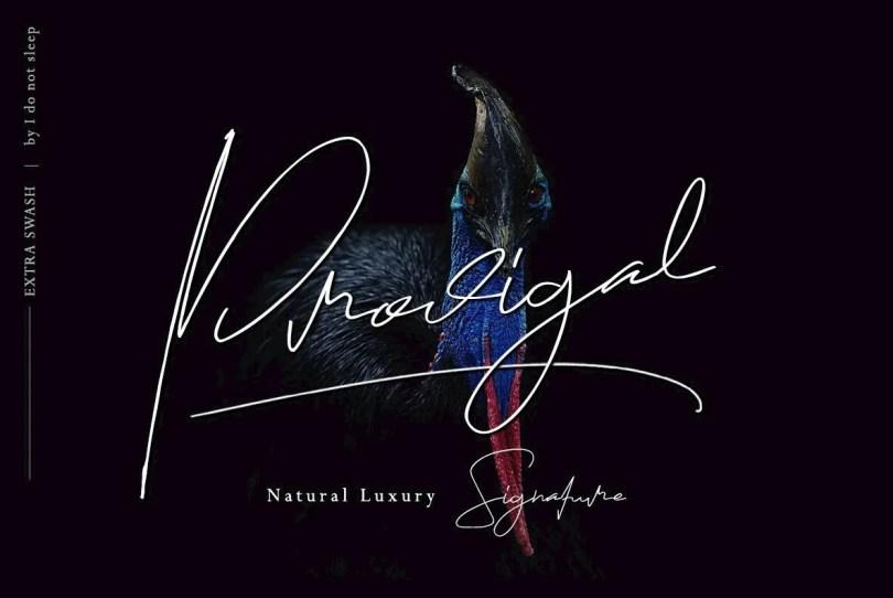 Prodigal [2 Fonts] | The Fonts Master