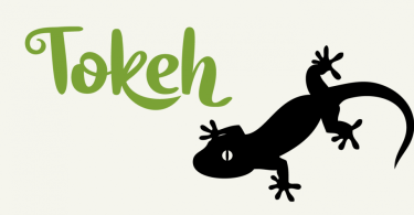 Tokeh [2 Fonts] | The Fonts Master