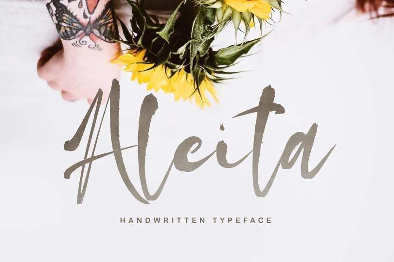 Aleita [1 Font] | The Fonts Master