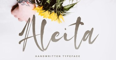 Aleita [1 Font] | The Fonts Master