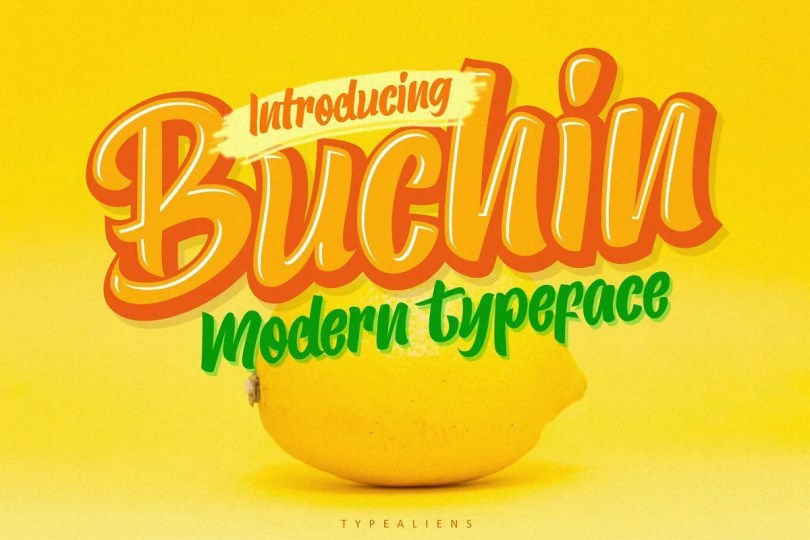 Buchin [1 Font]   The Fonts Master