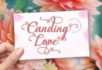 Canding Love [1 Font] | The Fonts Master