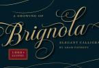 Brignola [2 Fonts] | The Fonts Master