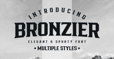 Bronzier [8 Fonts] | The Fonts Master