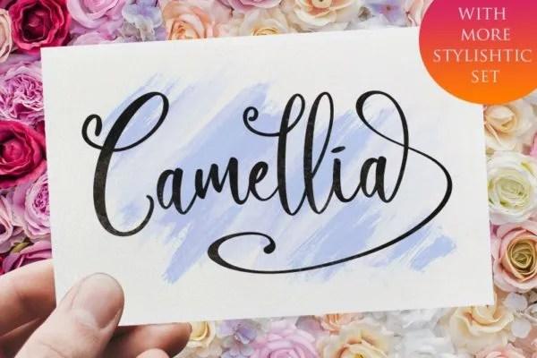 Camellia [1 Font]